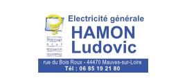 ludovic-hamon